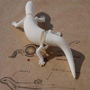 ربات های بی نظیر حیوانی – طراحی سه بعدی