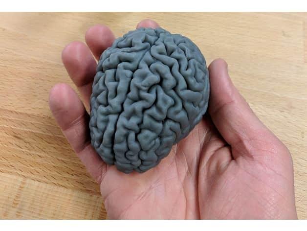 طرح سه بعدی مغز