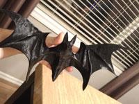 طرح سه بعدی خفاش