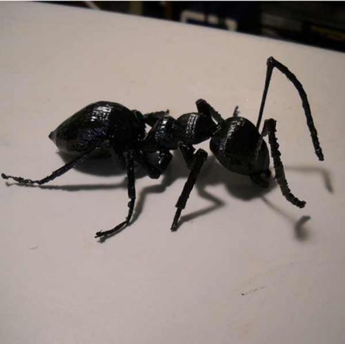 طرح سه بعدی مورچه